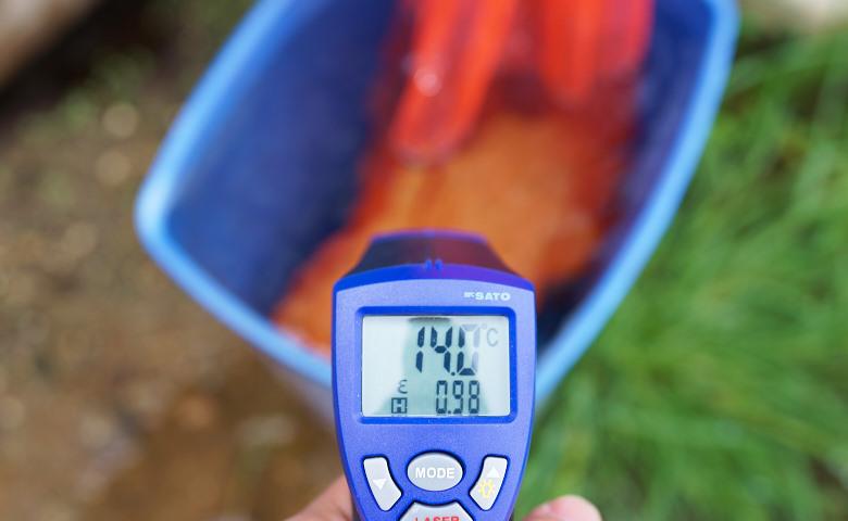 赤外線温度計DSC01132.jpg
