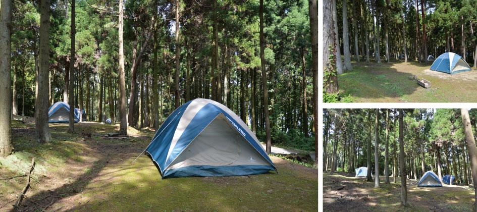 auto-camp3.jpg